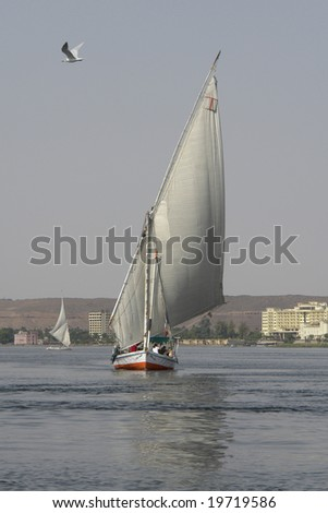 Traditional Fulouke on the Nile. (Egypt).