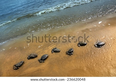 trail barefoot feet in the sand on a beautiful beach made of stony                                   - stock photo