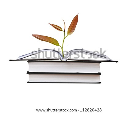 tree growing from open book - stock photo