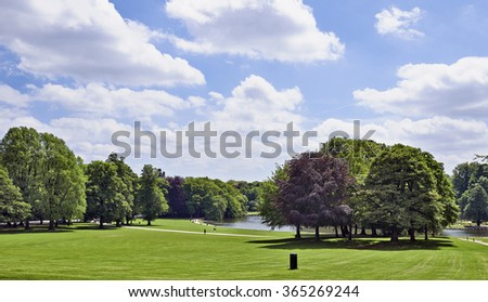 Trees on the horizon, on a bright summers day. - stock photo