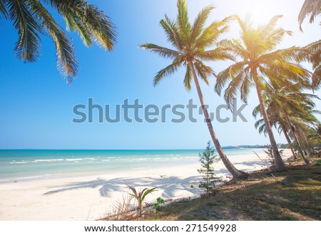 tropical beach and coconut palm trees - stock photo