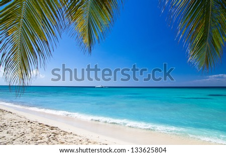 tropical sea under the blue sky - stock photo