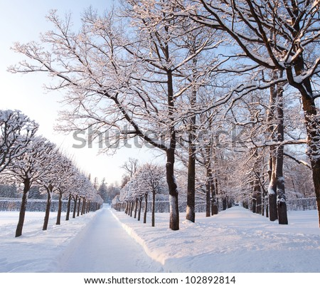 """Two Roads"" and both in the snow (snow park) - stock photo"