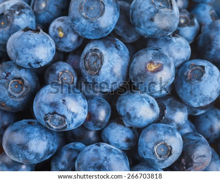 �?unch of wild berries and mint on a wooden board - stock photo