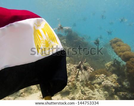 """underwater revolution"" - stock photo"