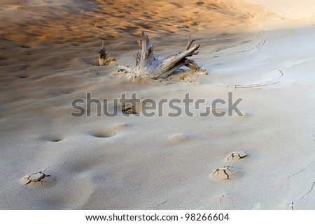 """Unearthly Sands"" -- Sand Dunes -  Silver Lake State Park, Mears, Michigan, USA - stock photo"