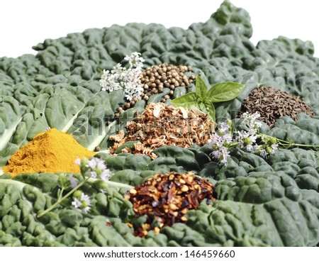 up close spice mixture on the cabbage sheet - stock photo