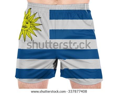 Uruguay flag - stock photo