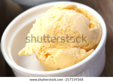 Vanilla ice cream - stock photo