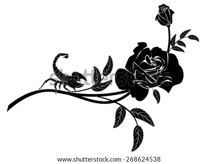 vignette with rose and scorpion in black and white colors - stock photo