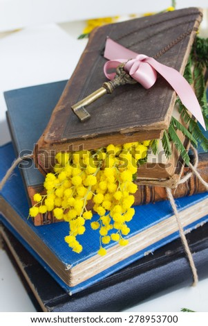 vintage old books  with antique sceleton key  - stock photo