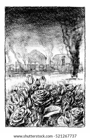 War and roses Charcoal drawing of flowers, smoking craters in background.