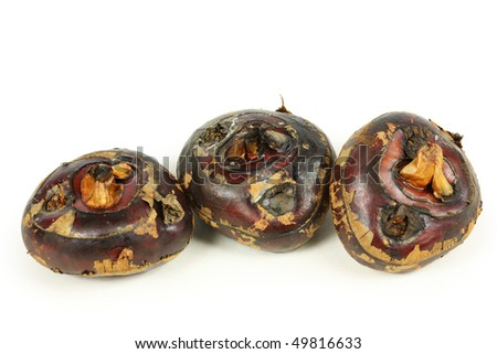 Water Chestnut on the white background - stock photo