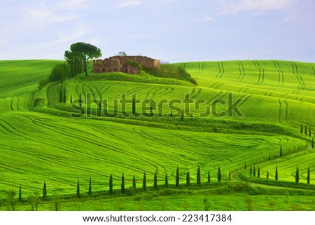 Wavy hills, cypresses and the destroyed estate , Tuscany, Italy - stock photo