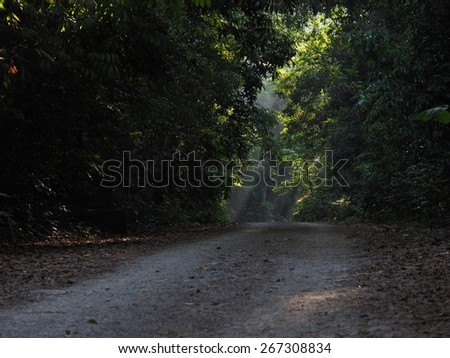 4wd tire tracks route - stock photo