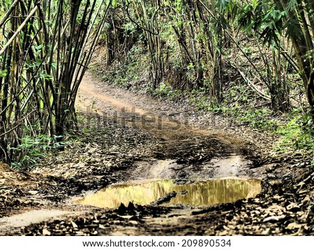4wd tyre tracks - stock photo