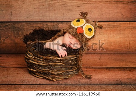 1 week old newborn girl wearing a brown owl hat and sleeping in a nest. - stock photo
