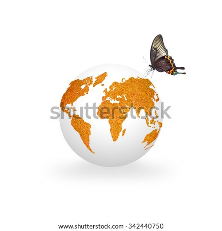 White clean globe with orange color grass world map texture pattern isolated on white background with butterfly:  Orange the world symbolic concept/ campaign to end violence against women and girls - stock photo