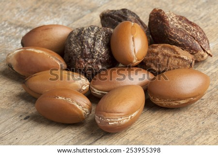 Whole Argan nuts   - stock photo