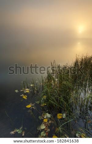 ?wieszyno lake in north Poland. Pomerania district. / Morning lake  - stock photo