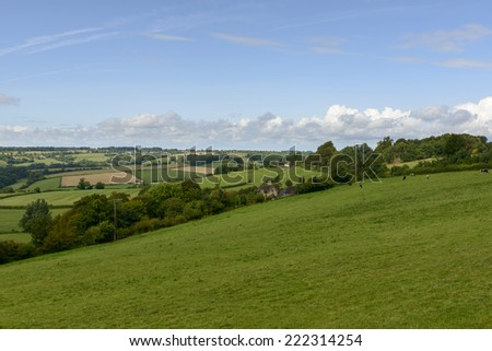 Wiltshire countryside near Corsham landscape with meadows  in   Wiltshire countryside with grazing cows   - stock photo