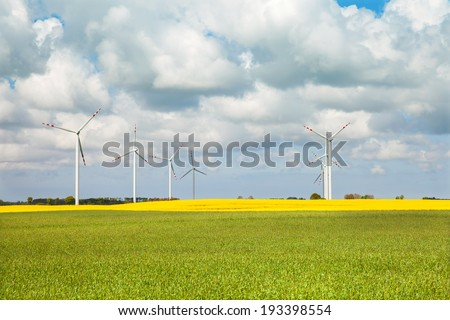 wind turbine in rapeseed field