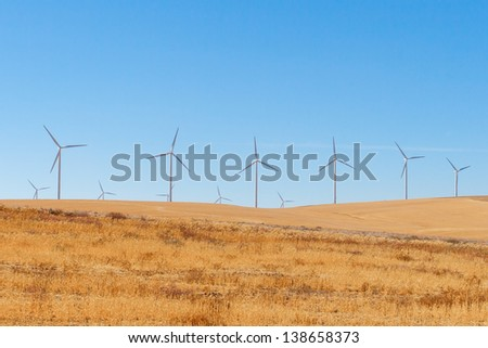 Wind turbines in a yellow field with blue sky