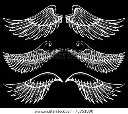 2 wings over black background - stock photo