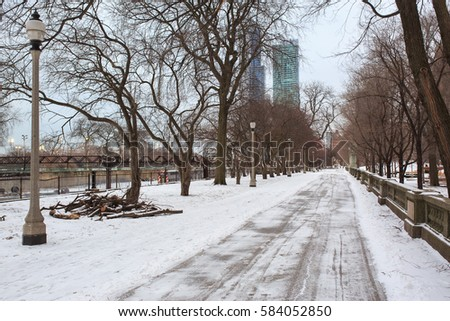 Winter in Chicago park