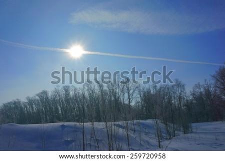 winter landscape, winter forest,                               - stock photo