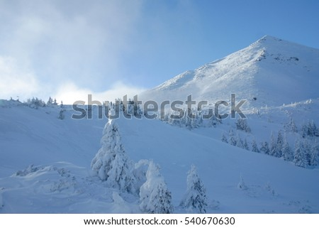 winter landscape, Winter mountains with snow covered trees,  snow-capped peaks of mountains, Beauty world