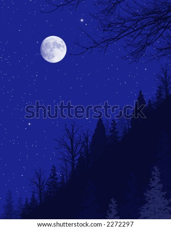 Winter moon lit night background with stars and trees