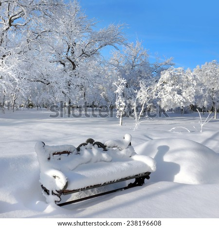 Winter nature, trees and bench in snow - stock photo