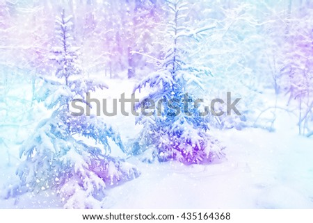winter woods. Winter landscape. Snow covered trees - stock photo