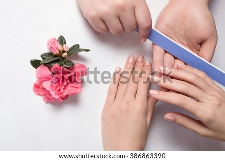 Woman getting nail manicure in  salon. Care for hands. manicure master makes the nails smooth using the nail file with smooth ends purple - stock photo