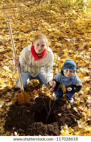 woman with  preschooler son setting tree in autumn garden - stock photo