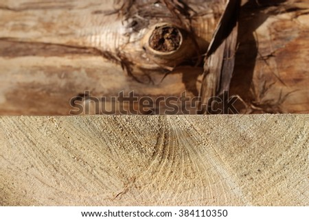wood plank with copy space. Weathered, bleached gangplank background on the beach. Wood background.