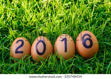 2016 word from eggs in green grass - stock photo