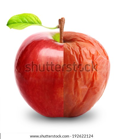 Wrinkled and fresh apple isolated on white background. Aging concept. - stock photo