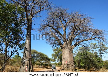 4X4 Driving Southern Africa - stock photo