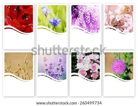 """6""""x4"""" Natural Cosmetic Label Set With My Own Photos, Copyspace - stock photo"""