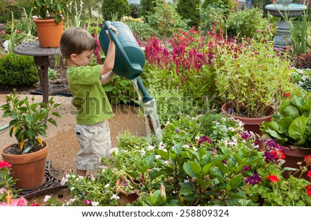 3 year old boy watering the garden with a watering can in the summer - stock photo