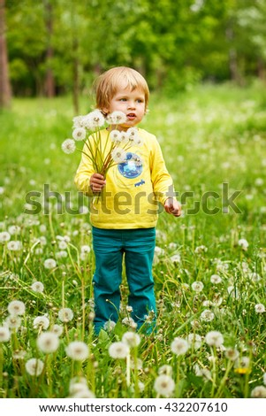 2-3-year-old cute boy staying on the green grass in the park with bouquet of dandelions.