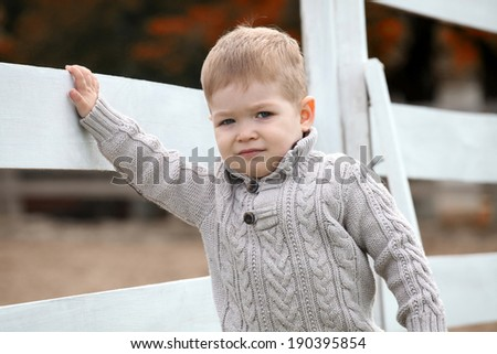 2 years old Baby boy on the a white picket fence beside the horse - stock photo