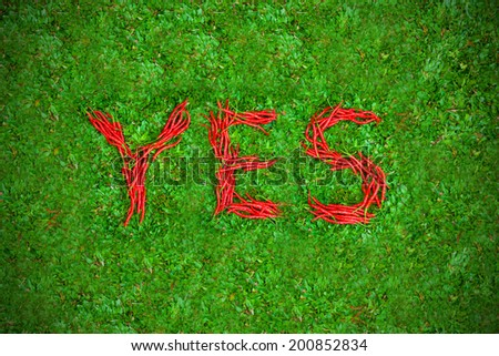 """""""YES"""" word shaped group of red chili peppers on the green grass - stock photo"""