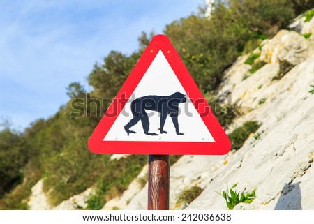A a warning sign with Barbary macaques (Barbary apes) that live in Alameda Wildlife Conservation Park in Gibraltar - stock photo