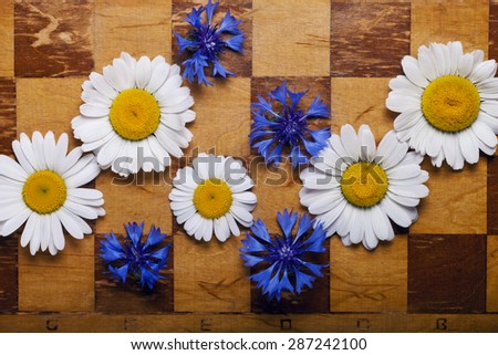 a Abstract flowers chessboard background - stock photo