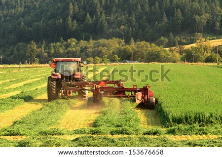 a agricultural tractor cuts a field of alfalfa with a side swather mower in southern Oregon  - stock photo