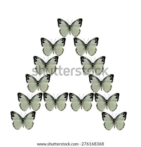 A Alphabet made from consolation of Lessor Albatross butterflies - stock photo
