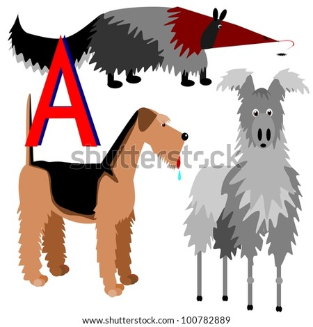 Anteater Airedale Alpaca Illustration Animals That Stock